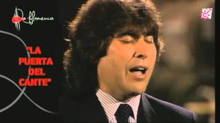 Colombiana. Luís de Córdoba. 1991
