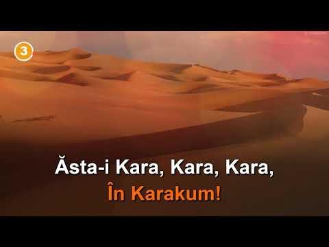 "Vitalicus: ""Karakum"". Karaoke + Voce"