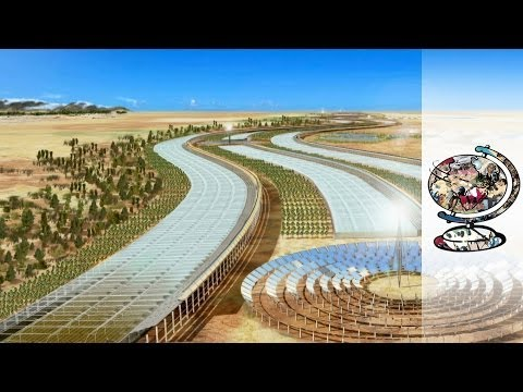 Qatar's Ambitious Plan to Turn the Desert Green