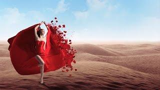 Radion6 & Sarah Lynn - A Desert Rose (Radio Edit)