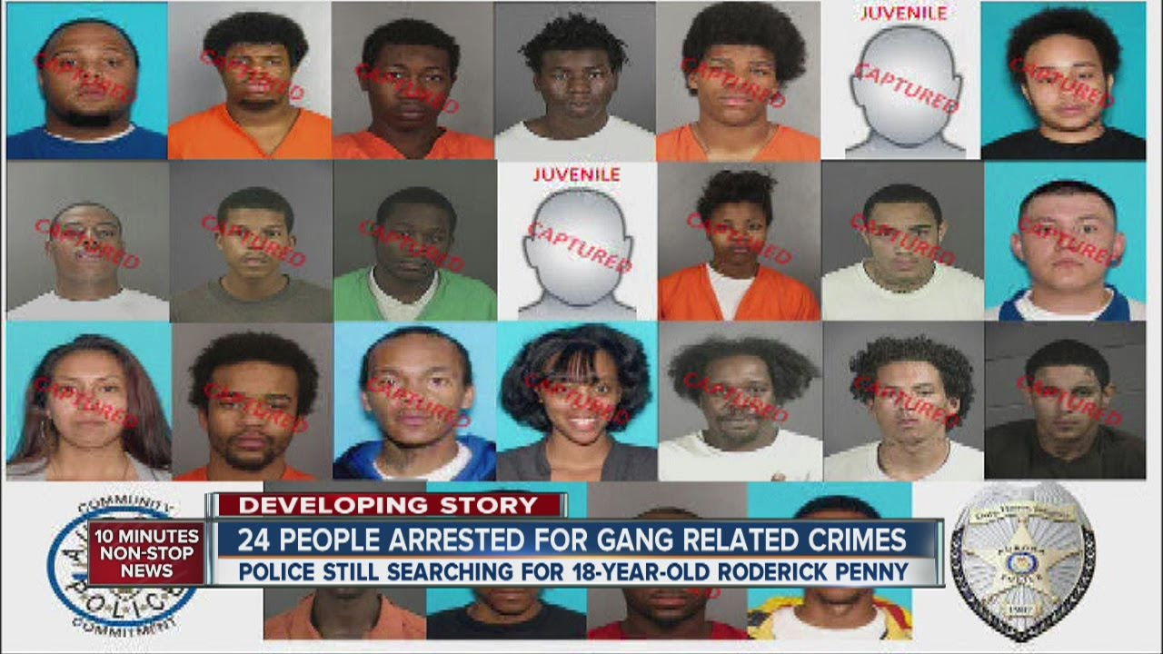 2-year investigation nets 24 suspected gang members