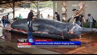 Download Video Pemburu paus di Wada Jepang kembali dengan tradisi mereka berburu paus - NET12 MP3 3GP MP4