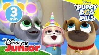 Puppy Dog Pals | The Sea Unicorn 🦄 | Disney Junior UK