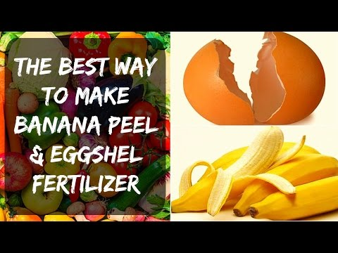 👩🏻‍🌾 Eggshell Fertilizer + Banana Peel - Potassium & Calcium for Tomatoes & Peppers in Your Garden