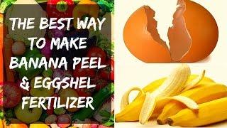 Eggshell Fertilizer + Banana Peel - Potassium and Calcium for Tomato & Pepper Plants in Your Garden