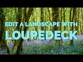 Lightroom Tuesday: Processing a bluebell woods shot using a Loupedeck