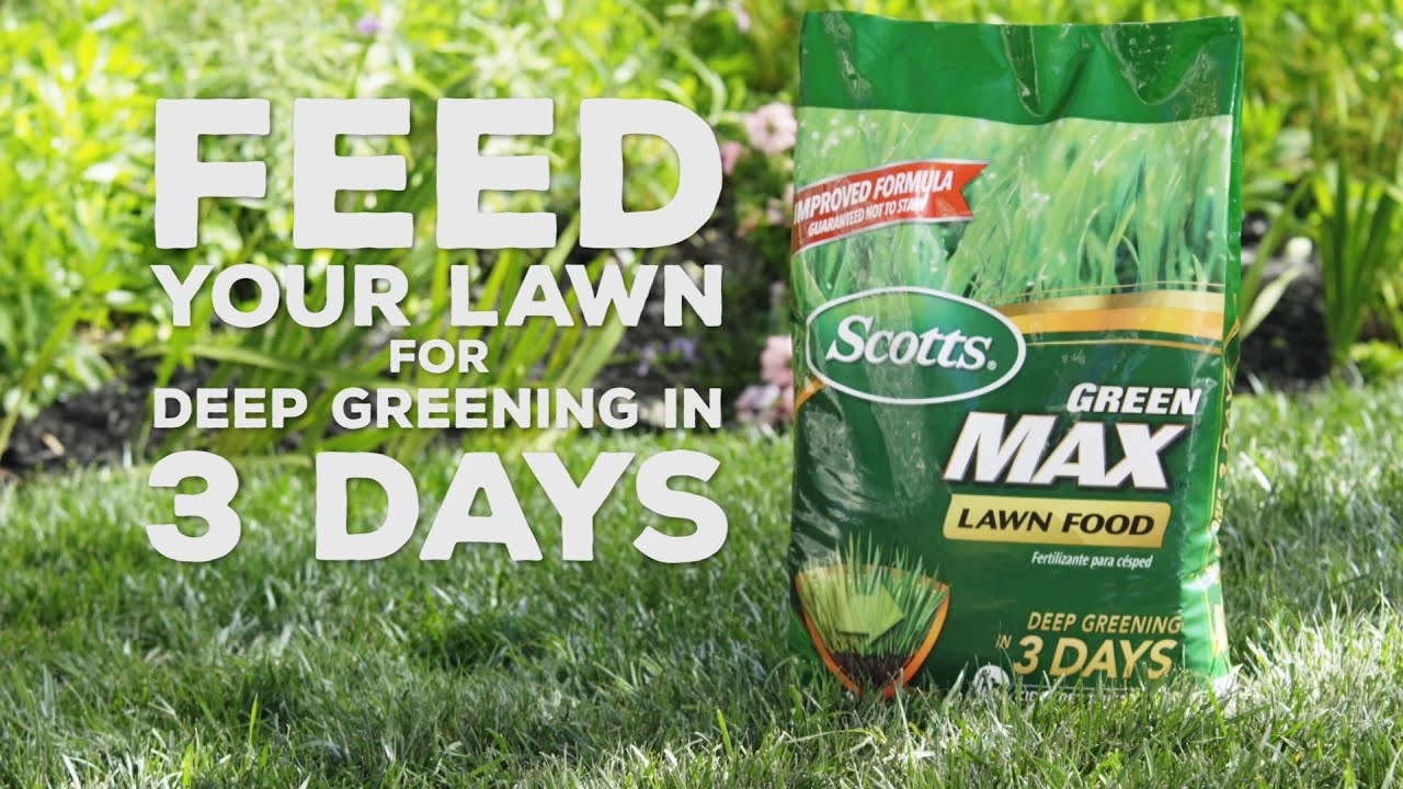 How To Feed Your Lawn for Deep Greening In 3 Days