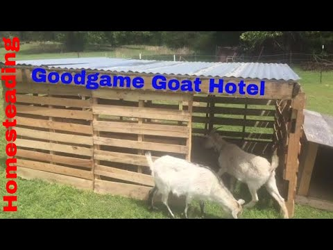 Pallet Project: The New Goat Mansion!