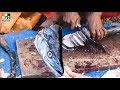 Fastest Fish Cutting Ever 30 Minutes Fish Cutting street food