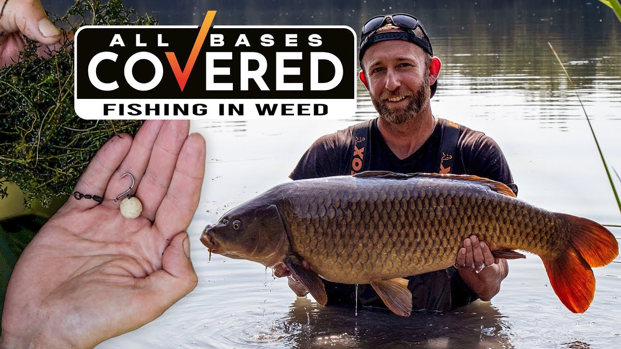 All Bases Covered – Episode 6 – Fishing in Weed