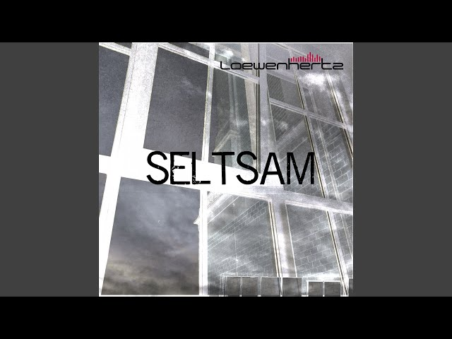 Seltsam (Faltenhall The Artist Remix)