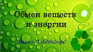 Обмен веществ и энергии(Процесс обмена — основное свойство живого. В цитоплазме клеток органов и тканей постоянно идет процесс..., 2015-03-24T11:36:01.000Z)