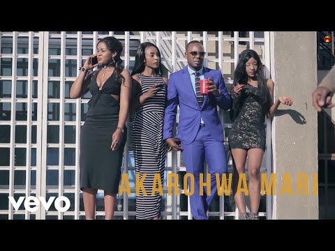 Stunner - Akarohwa Mari (Official Video) ft. Ba Shupi, DJ Towers