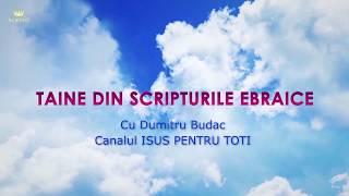 31. Taine Estera - Dumitru Budac