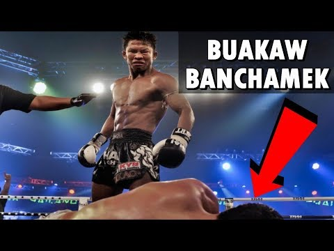 Buakaw Banchamek Highlight
