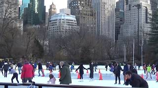 Trump Wollman Rink in New York Central Park on 2/10/2019 뉴욕 센트럴 파크 트럼프 울만 아이스링크