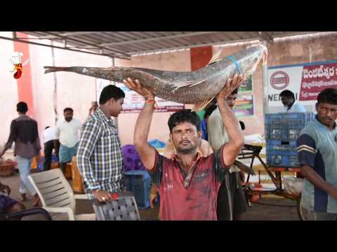 Bhahubali Top #5 fishes in south india || Spicy Foodies || Nizampatnam Harbour