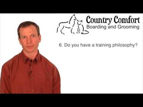 Dog Training Naperville | Dog Obedience Training Classes Naperville | Puppy Training Naperville