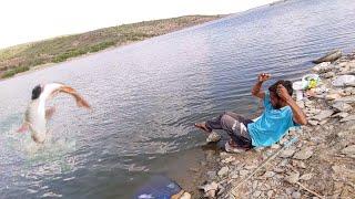 Sing shikar||Big rohu fish catch