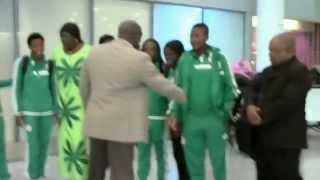 NIGERIAN FALCONETS IN CANADA