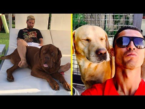 Futbolistas Famosos y Sus Perros ft.Messi,...
