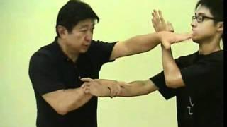 Mestre Alex Tse Win Ming
