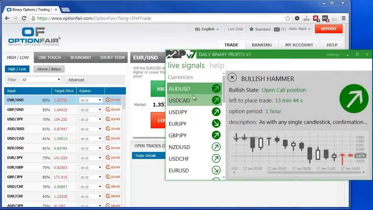 Binary options daily