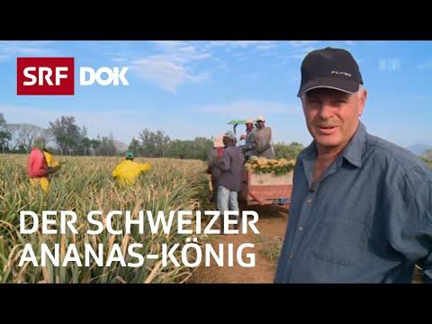 Schweizer Ananas-König in der Dominikanischen Republik