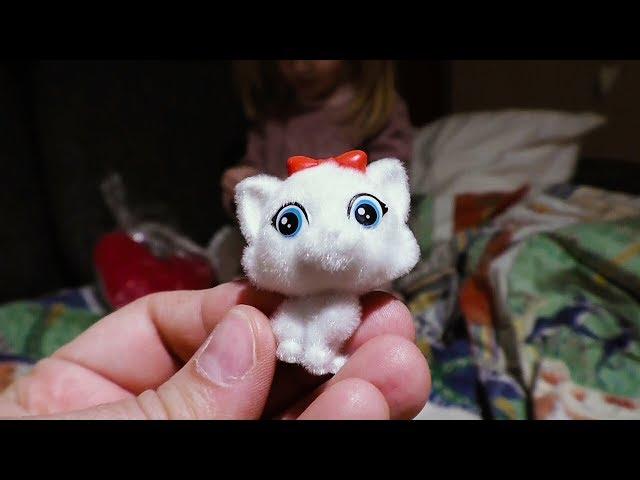 Sweet Box Cat Surprises ✿ Toys Surprises Opening