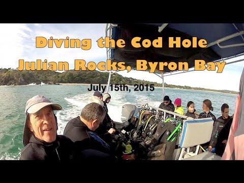 Kingfish and mulloway at the cod hole julian rocks byron - Dive byron bay ...