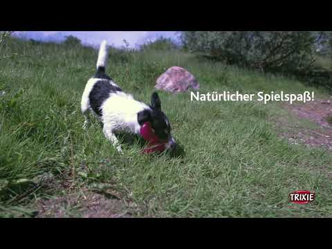 TRIXIE Heimtierbedarf - Bungee Boomerang Triplex Hundespielzeug