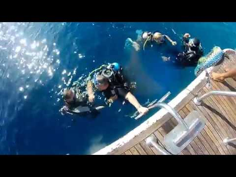 DIVING.Sharm el SHEIKH 2018.Dreams Resorts Egypt.Дайвинг.Шарм Эль Шейх