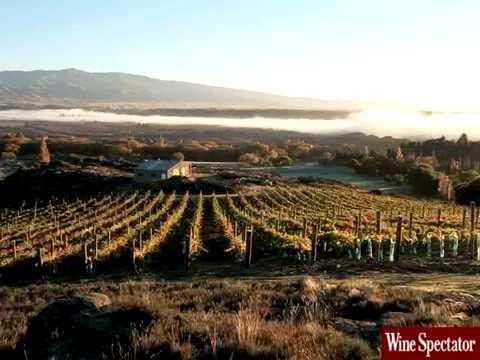 Sam Neill's Jurassic Pinot l Wine Spectator