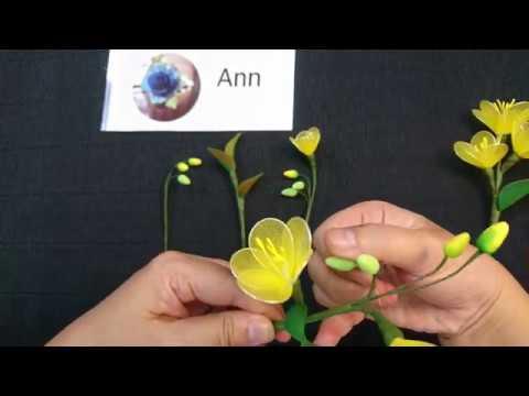 CÁCH LÀM CÀNH HOA MAI BẰNG VOAN ĐƠN GIẢN . HOW TO MAKE NYLON STOCKING FLOWER (APRICOT)