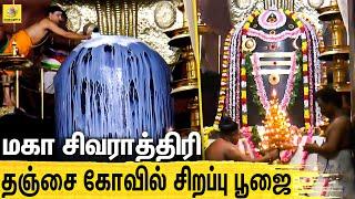Maha Sivarathiri | Thanjavoor