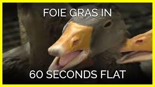 Foie Gras in 60 Seconds Flat