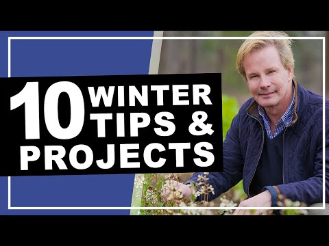 Winter Gardening Tips Projects P Allen Smith 2019 Youtube