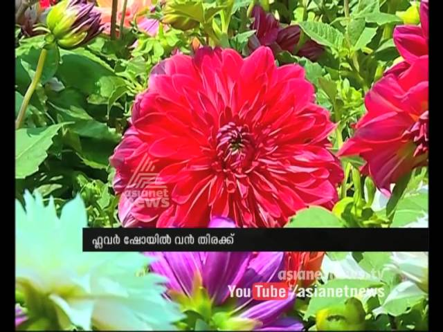Cochin Flower Show Started