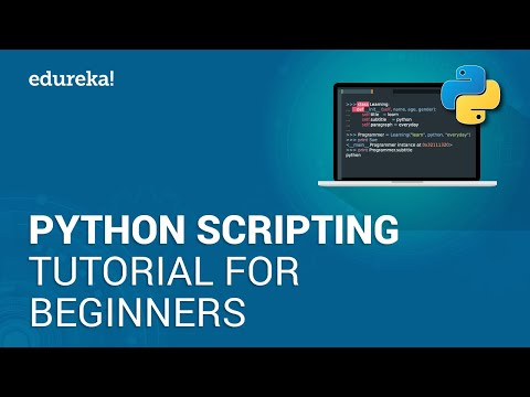 Python Scripting Tutorial for Beginners