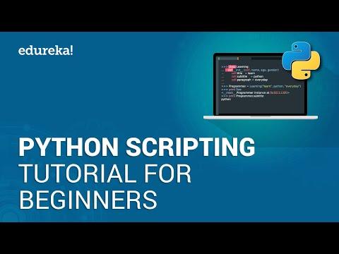 Python Scripting Tutorial for Beginners