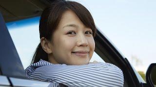 東京海上日動の自動車保険はなぜ高いのか?