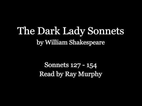dark lady sonnets summary