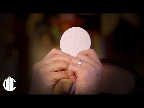 Catholic Mass: 11/25/20   Memorial of Saint Catherine of Alexandria