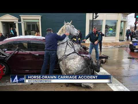 Horse-drawn Carriage Collides With Two Cars In Oconomowoc