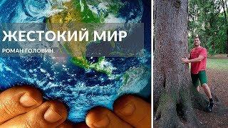 Роман Головин - Несправедливый и жестокий мир