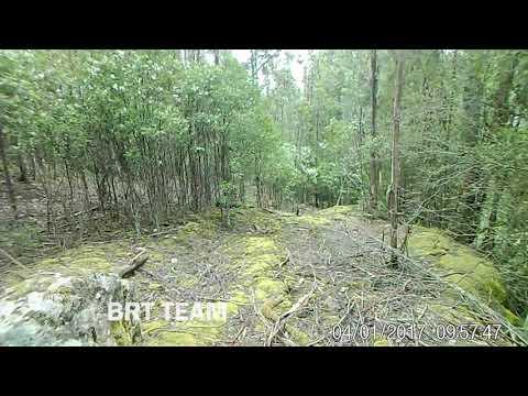 BRT Team's Alleged Tasmanian Tiger Sighting