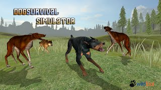 Dog Survival Simulator - Android Gameplay