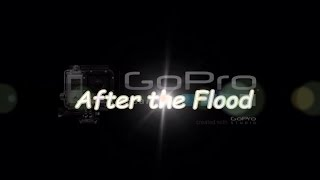 After The Flood - Beats of the Aberdeenshire Dee - January 2016