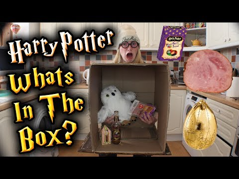 HARRY POTTER OR MUGGLE ITEM? - What's In The Box Challenge!