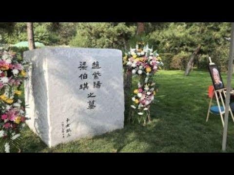 陈破空:缅甸行倒霉透顶,习近平名字成脏话!王沪宁拿墓地做文章,用心良苦。普京难以捉摸